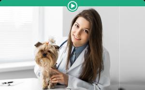 Manipulação veterinária 2ª edição